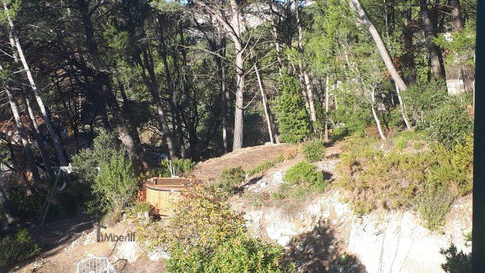 Bain Nordique Jacuzzi Avec Poêle Extérieur Bois Gaz Diesel, Childéric, LA BOUILLADISSE, France (1)
